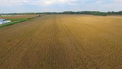 Farmland Auction High Quality Cropland Auction 671
