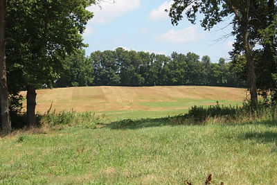 Schrader Real Estate And Auction Co Land Auction
